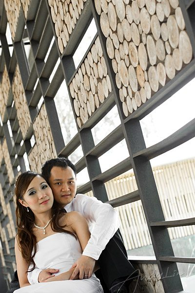Randy & Julyns Portraits: portraits : Andy Lim, Malaysian Wedding Photographer