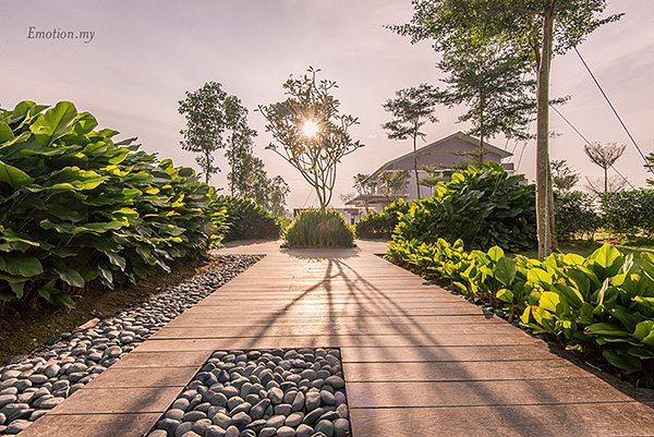 Rimbayu_Andy Lim