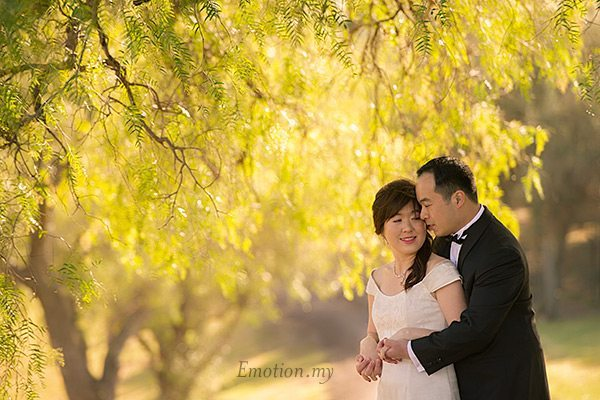 engagement-portraits-hunter-valley-australia-vineyard