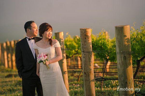 portraits-hunter-valley-australia-sydney-vineyard-sunrise
