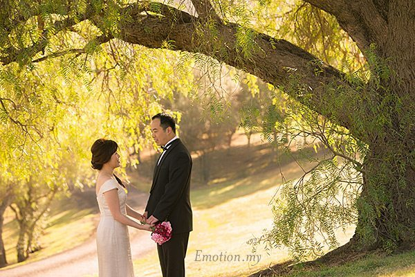 prewedding-portraits-hunter-valley