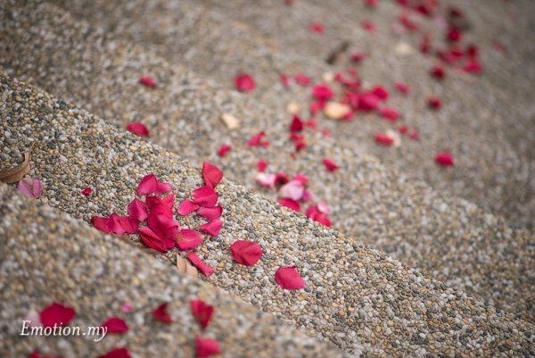 garden-rom-flower-petal-gita-bayu-kuala-lumpur-anand-dhashaini
